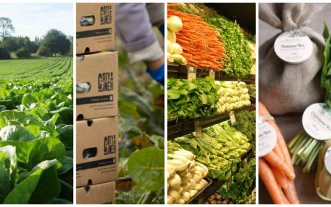 Sử dụng an toàn  hiệu quả vật tư nông nghiệp