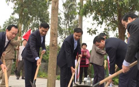 Thái Bình : Các địa phương phát động Tết trồng cây đời đời nhớ ơn Bác Hồ