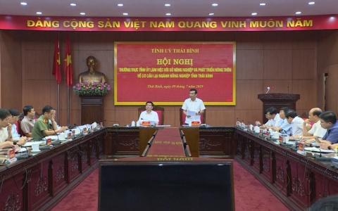 Cơ cấu lại ngành nông nghiệp tỉnh Thái Bình