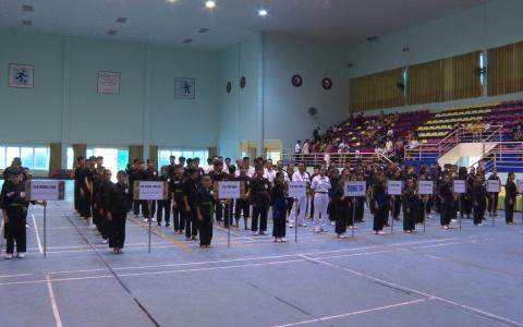 Khai mạc Giải võ thuật cổ truyền các câu lạc bộ tỉnh Thái Bình năm 2019