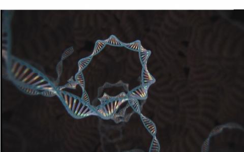 Niềm hy vọng từ công nghệ chỉnh sửa gien