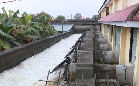 Các địa phương cần triệt để lấy nước đổ ải